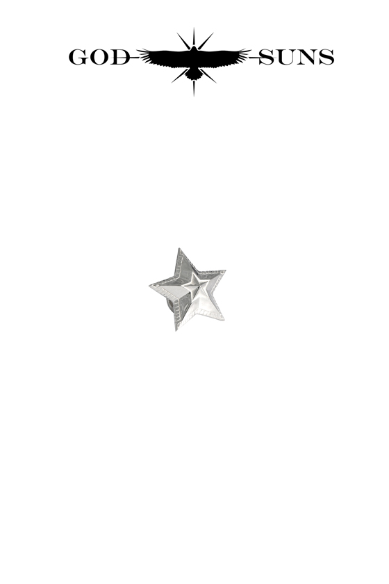 NATIVE ART STAR BEAD(Large)